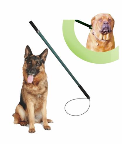 Baston pertiga para perros 3