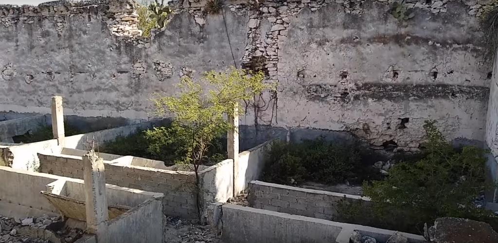Herpetologia buscando serpientes en construcción abandonada